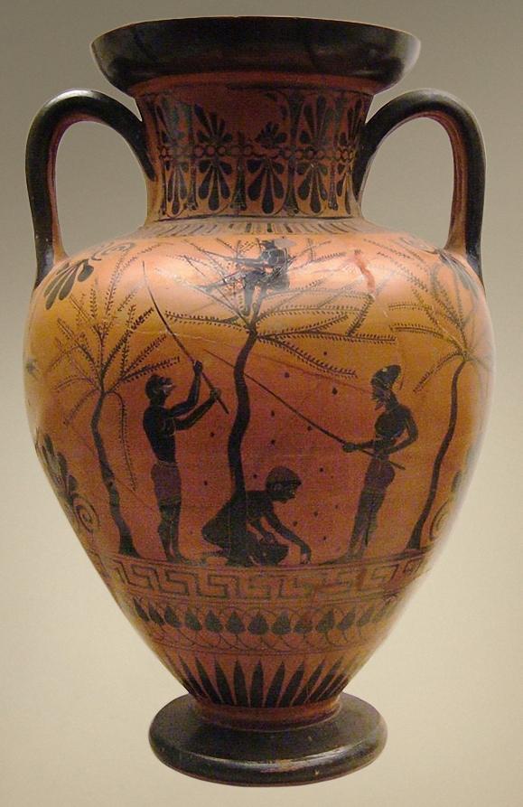 Olive harvest, black-figure neck amphora c. 520 BC. British Museum.