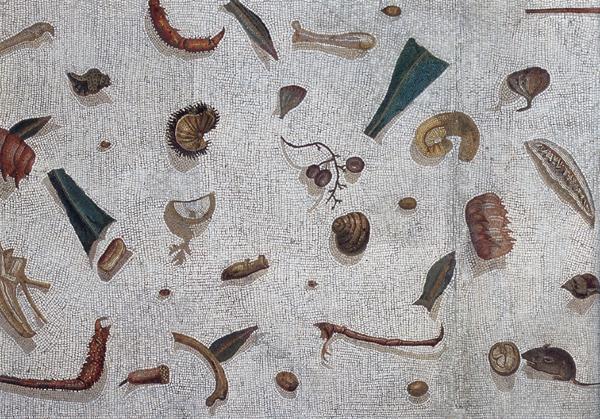 Unswept floor. Vatincan Museum.